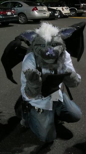 Begging bat
