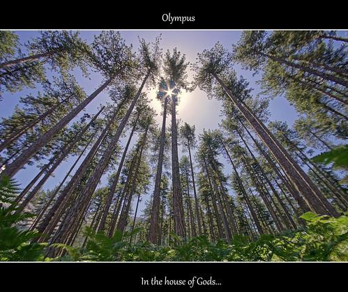 "landscape sony olympus greece a580 ""flickraward"" mygearandme"