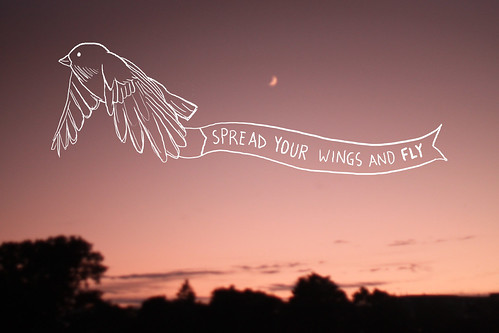 197/366 ~spread your wings and fly
