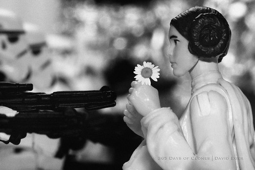29/52 | Flower Child, Death Star Protest by egerbver