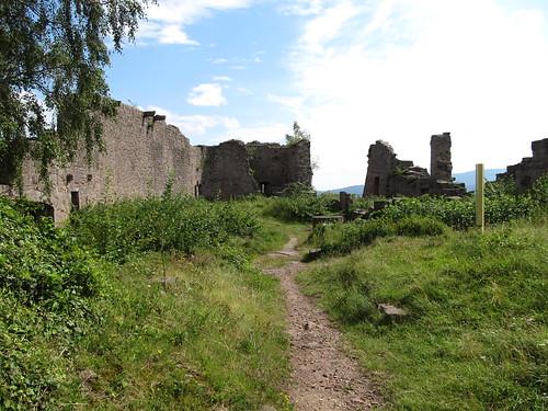 ruine du chateaux frankenbourg 096