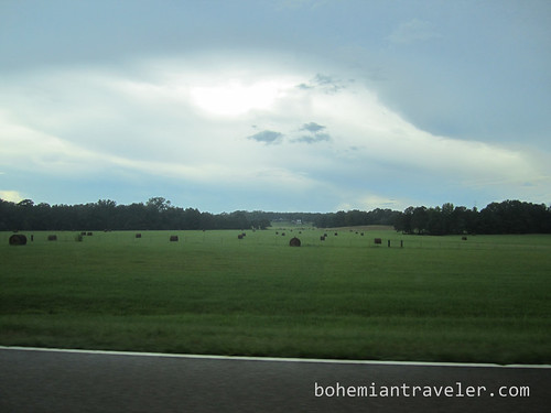 along the Natchez Trace in MS