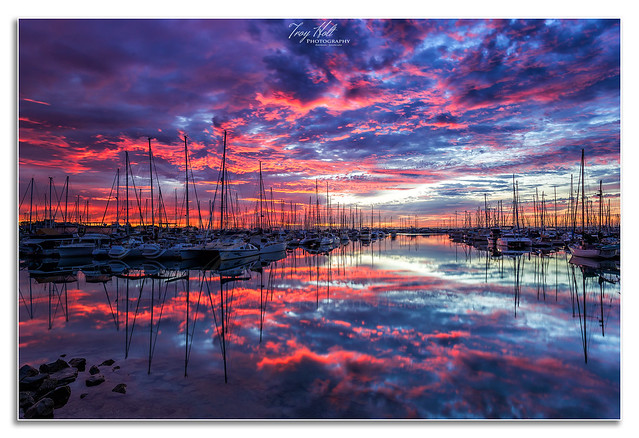Manly Harbour Sunrise
