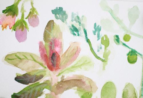 Garden Sketches 04