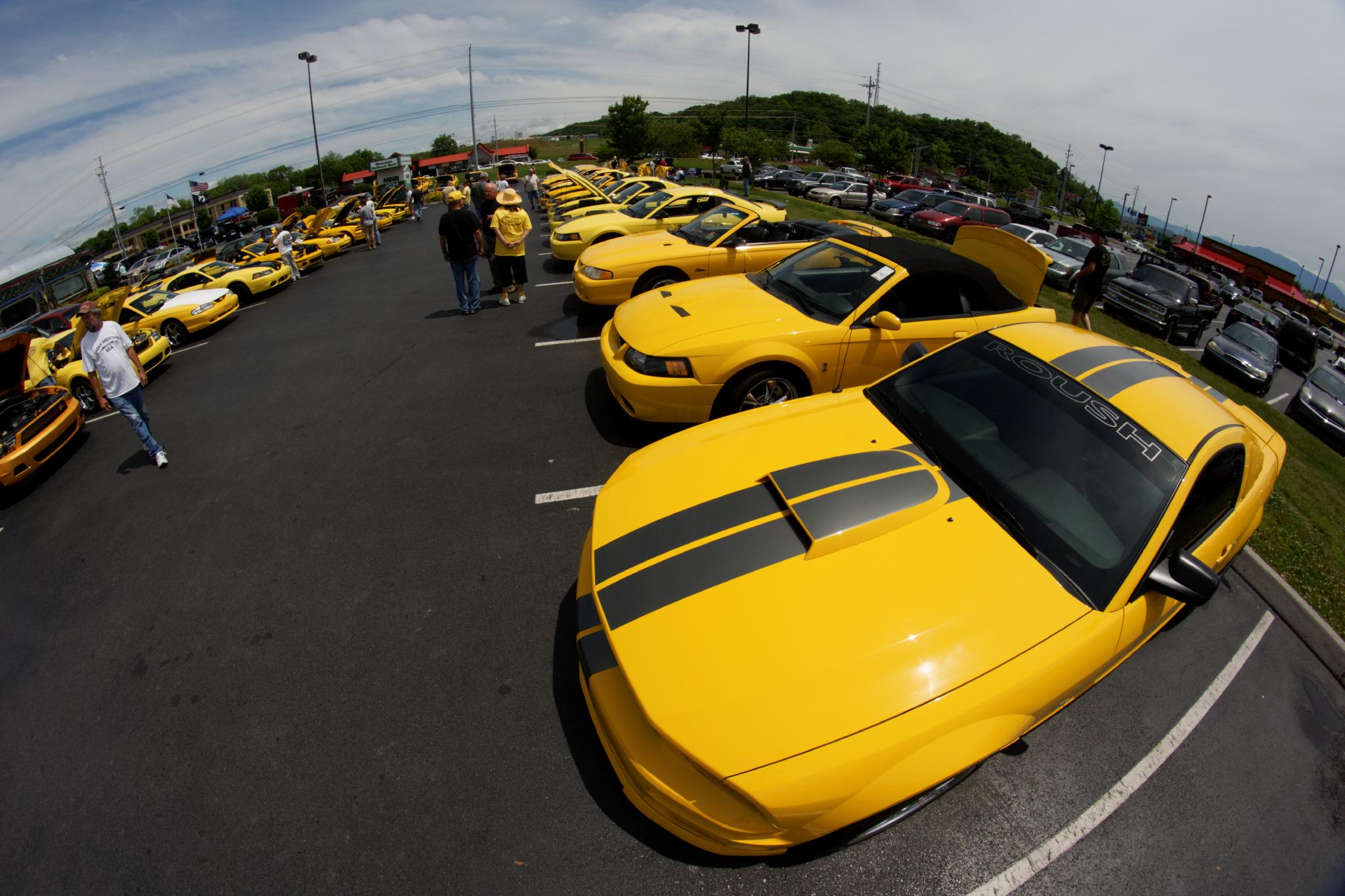 Mustang Car Show Sevierville Tn
