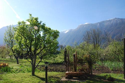park mountains alps garden julian slovenia national valley triglav soča primorska bovec