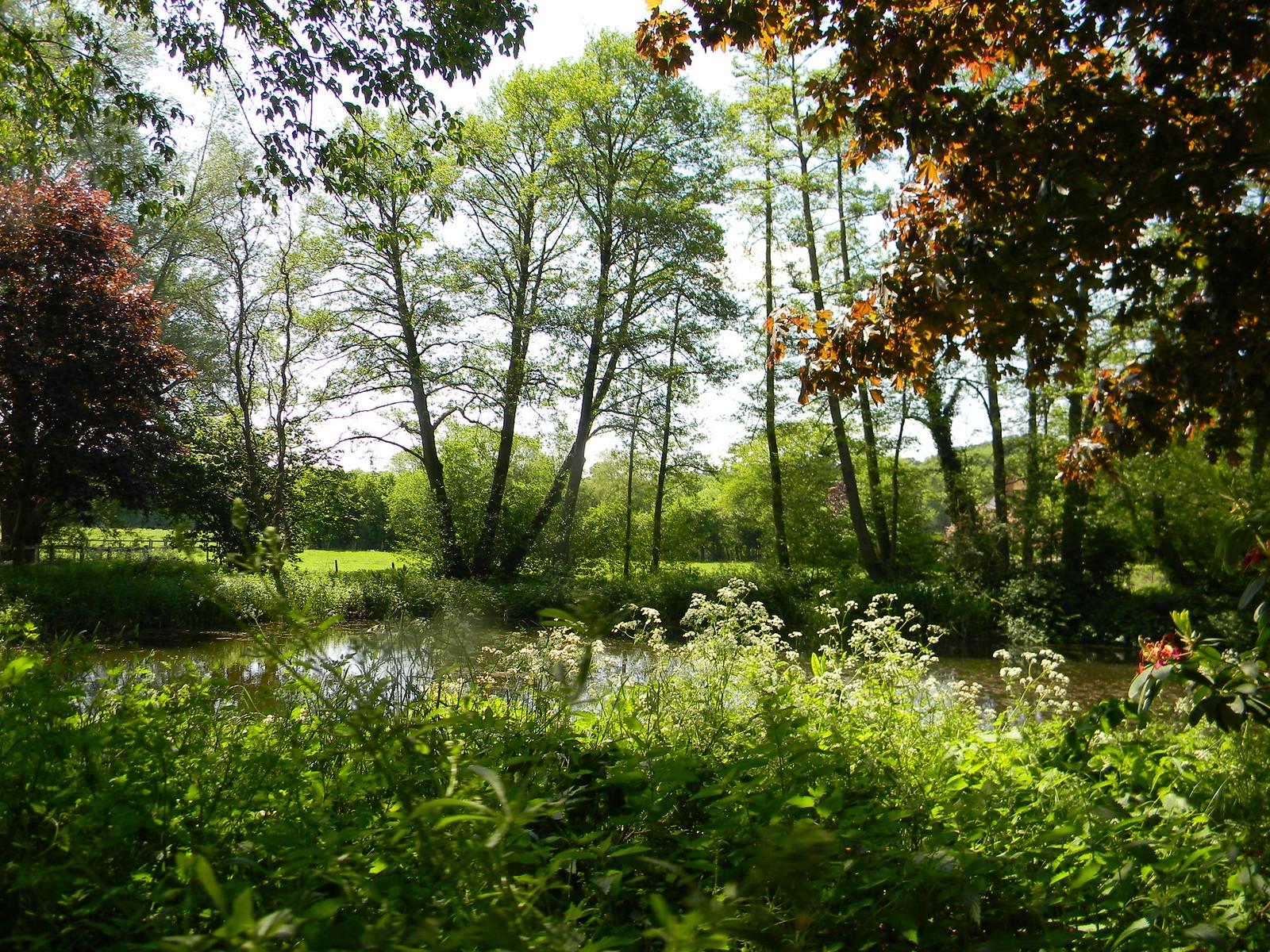 Pond Farnham Circular