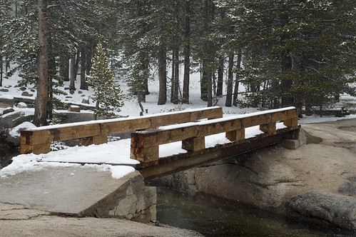 "Wooden bridge to ""Awesome Meadow"""