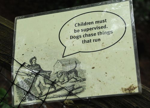 Children must be supervised. Dogs chase things that run, a sign of either danger or fun, Dog Park, north end, Seattle, Washington, USA by Wonderlane