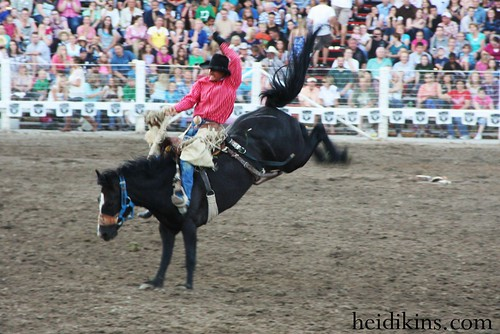 Strawberry Days Rodeo_June 2012 (27)