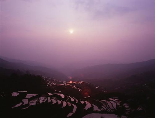 china sunset 50mm iso100 fuji purple rice terrace velvia bronica 中国 guizhou 夕日 f28 紫 etrsi zenza 棚田 zenzanon ゼンザブロニカ 貴州省 ゼンザノン