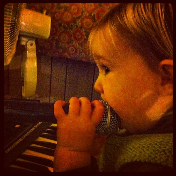 Tiny Owlet joins in too #keyboard #vocals #bandpractice