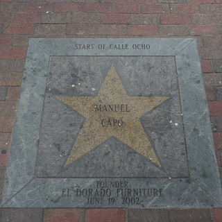 Stars of Calle Ocho