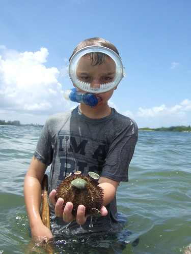 Matthew finds a big sea urchin. | by AdventureMIke.com