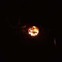 Fire in r chiminea. Erect evening!