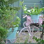 Pretty bicycle planter