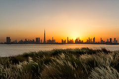 The Terrace, Dubai Creek Harbour - United Arab Emirates