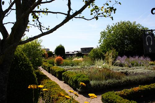 Wild-garden