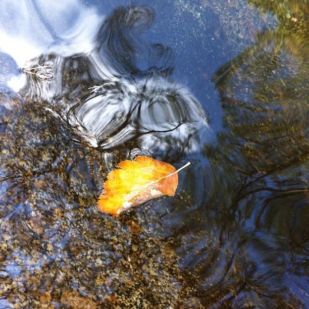 Indicios de un otoño inminente