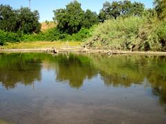 Kings River @ Hauli Huvila