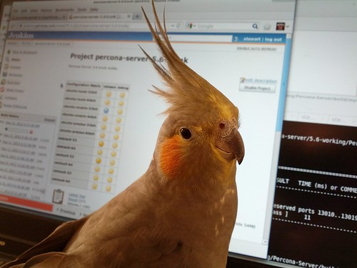 Beaker helping out with our next release