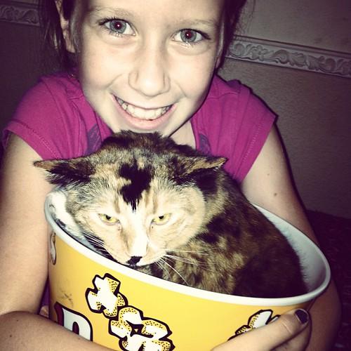 Popcorn cat.