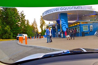 After Hours | Vancouver Aquarium