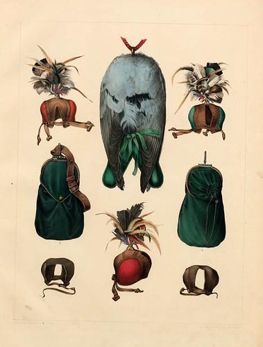 004-complementos de cetreria- Traité de fauconnerie..1853- Hermann Schlegel- Universität Düsseldorf
