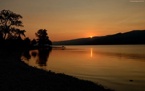morning light sun lake canada water sunrise reflections photography photo nikon photographer bc image britishcolumbia okanagan silhouettes photograph okanaganlake okanaganvalley peachland copyrightimage nikond7000 taniasimpson