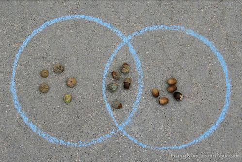 Outdoor Acorn Math Activities