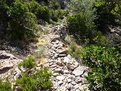 Entre Livisani et le col de la pointe 571 : le chemin avec ses murets de soutènement