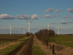 prairie(0.0), polder(0.0), mill(0.0), rural area(0.0), machine(1.0), windmill(1.0), field(1.0), plain(1.0), wind(1.0), wind farm(1.0), electricity(1.0), wind turbine(1.0),