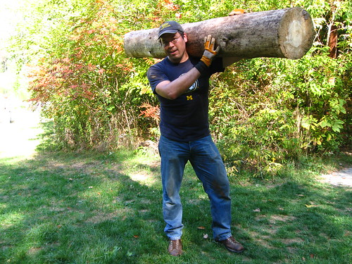 Carried over a pine log