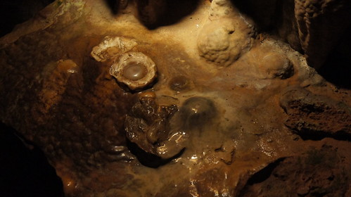 "Luray Caverns - ""Fried Eggs"""