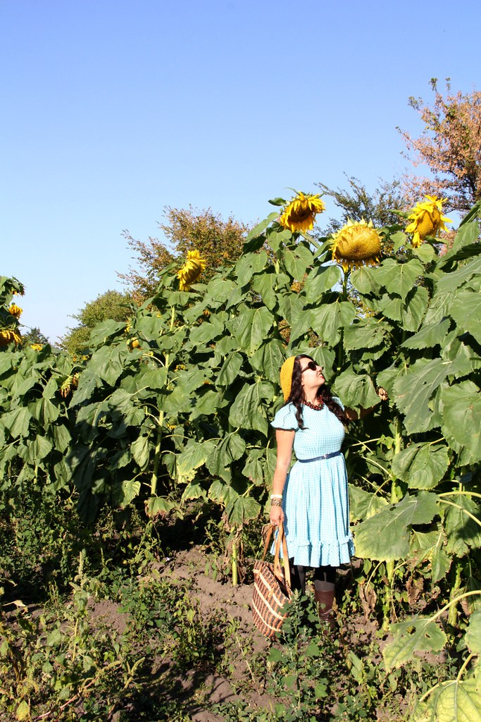 thriftaholic_giantsunflowers