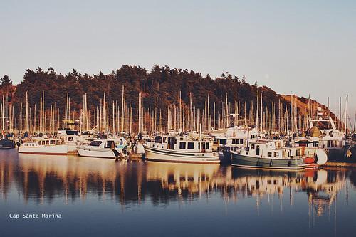 autumn sunset sea reflection fall water marina boats fishing dock seasons nautical anacortes