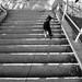 Stair Shadows by Tony DeFilippo