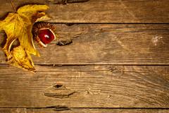 Tabletop - Herbst