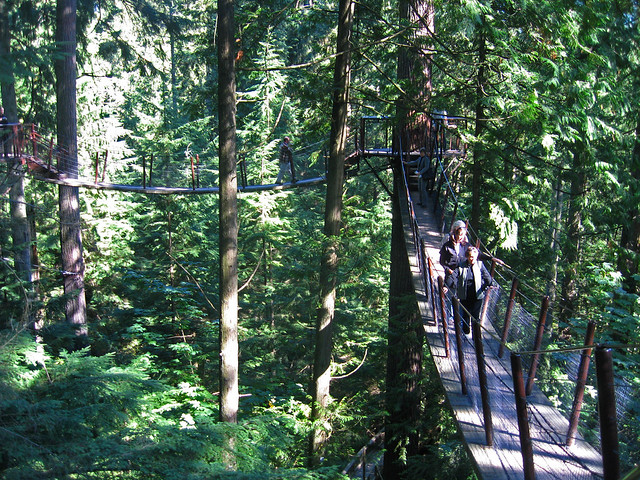 Capilano treetop adventure 3, Canon DIGITAL IXUS 750