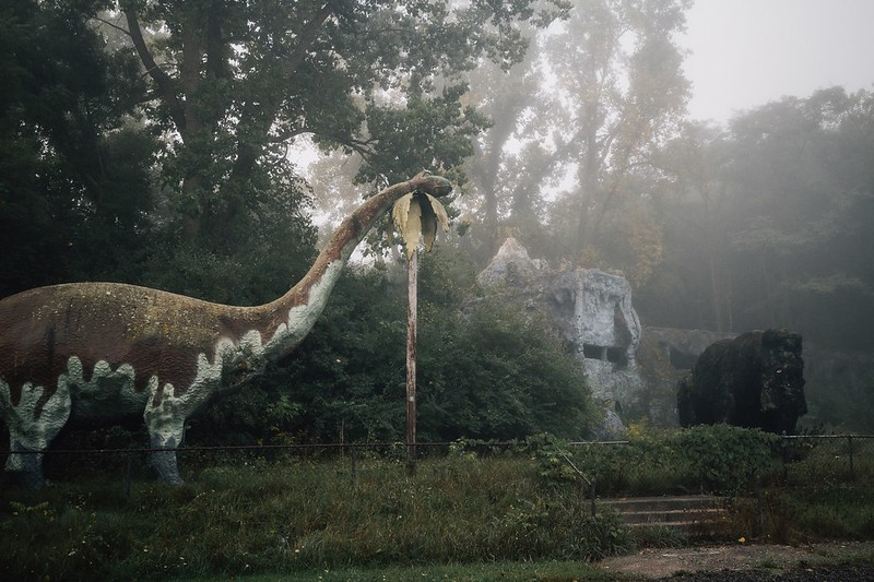 Prehistoric Forest: Lost in Epoch