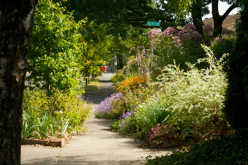 Sunny Midday Garden  2101