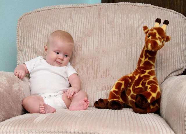 M vs giraffe week 13