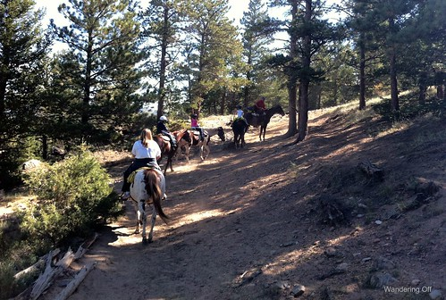 Horseback ride, Estes Park