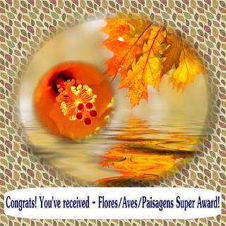 Award 5+