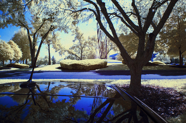 Infrared Oil Painting 2