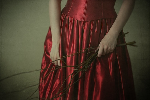 bearing branches by elle.hanley