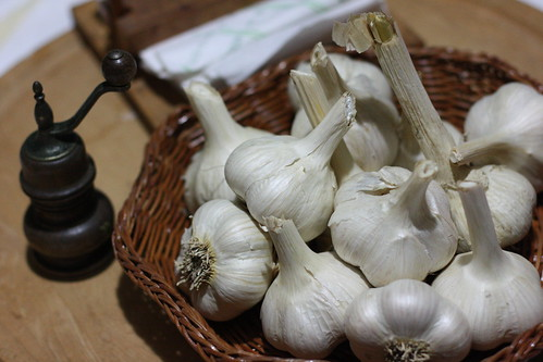 Garlic for seed