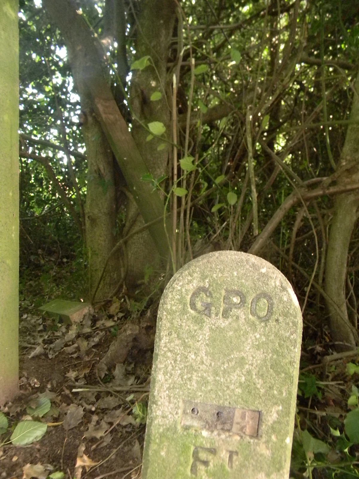 Old marker By a stile. Chesham to Great Missenden