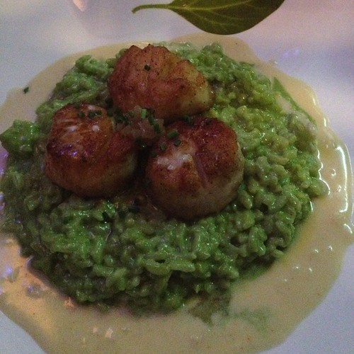 scallops and basil risotto at Cafe Normandie