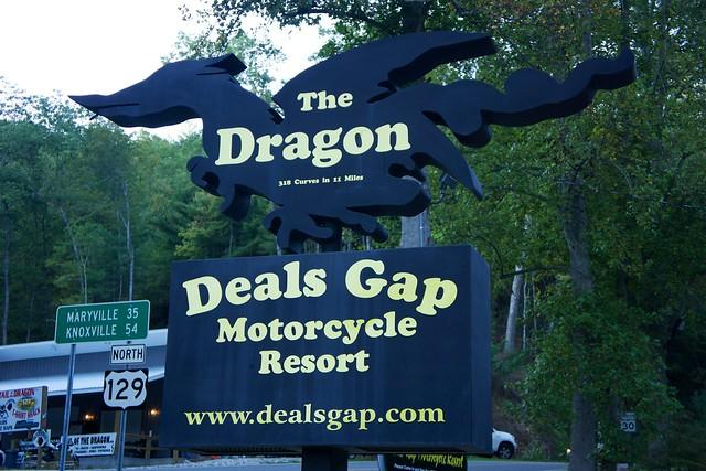 dragon sign